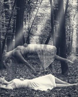 Levitation im Wald